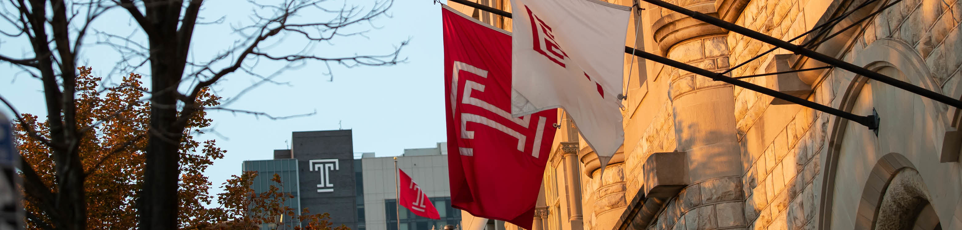 TPAC and Morgan Hall w/ Temple Flags and a tree