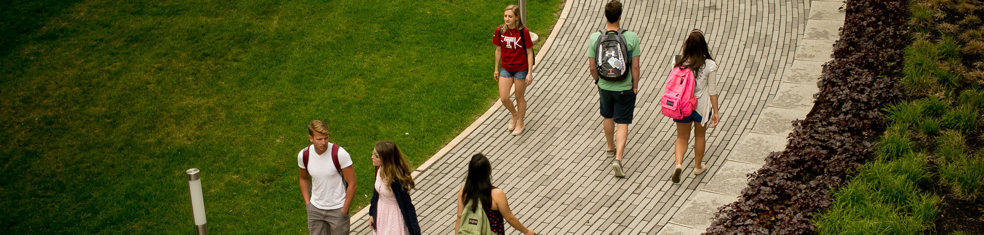 Students walking throughout campus