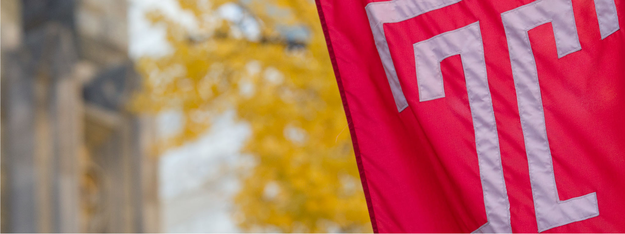 Temple Flag with fall leaves